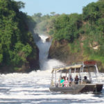 Top 4 Activities to Enjoy On Safari In Murchison Falls Park